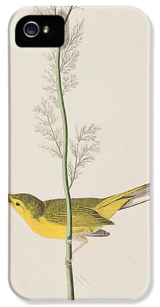 Hooded Warbler IPhone 5s Case by John James Audubon