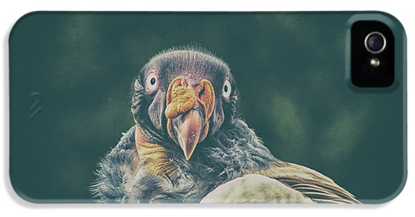 Condor iPhone 5s Case - King Vulture by Martin Newman