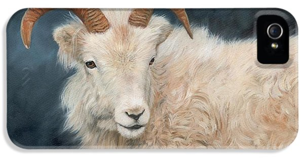 Mountain Goat IPhone 5s Case by David Stribbling