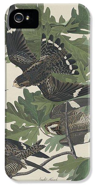 Night Hawk IPhone 5s Case by Rob Dreyer