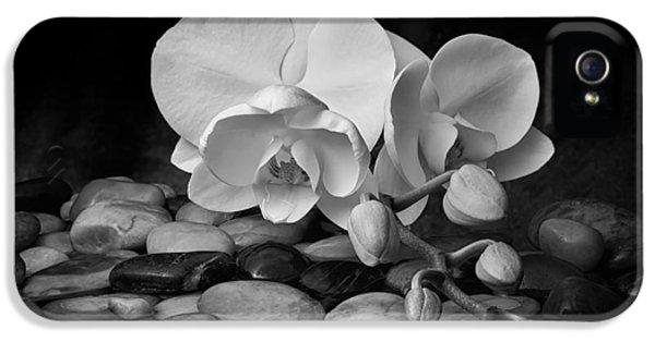 Orchid - Sensuous Virtue IPhone 5s Case