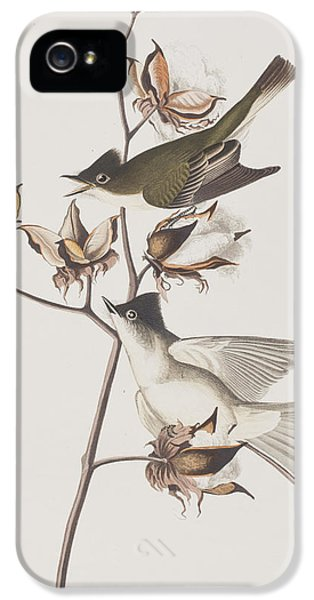 Pewit Flycatcher IPhone 5s Case by John James Audubon
