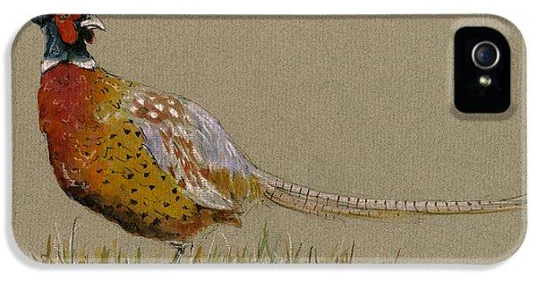 Pheasant iPhone 5s Case - Pheasant Bird Art by Juan  Bosco