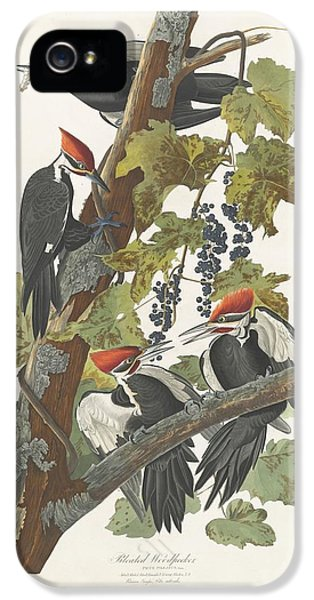 Woodpecker iPhone 5s Case - Pileated Woodpecker by John James Audubon