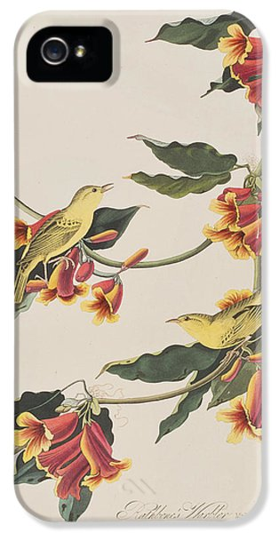 Rathbone Warbler IPhone 5s Case