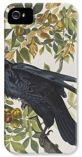 Raven IPhone 5s Case by John James Audubon