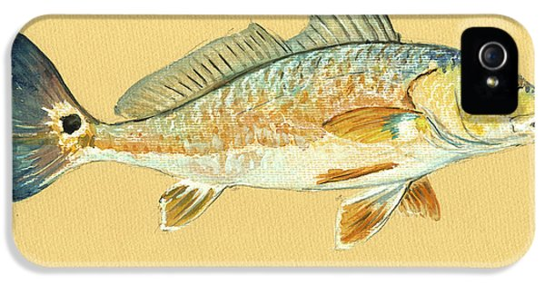 Miami iPhone 5s Case - Redfish Painting by Juan  Bosco