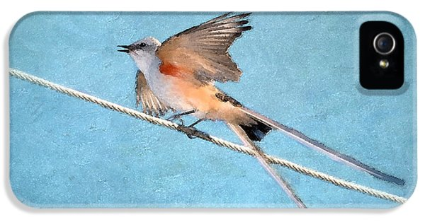 Scissor-tailed Flycatcher IPhone 5s Case by Betty LaRue