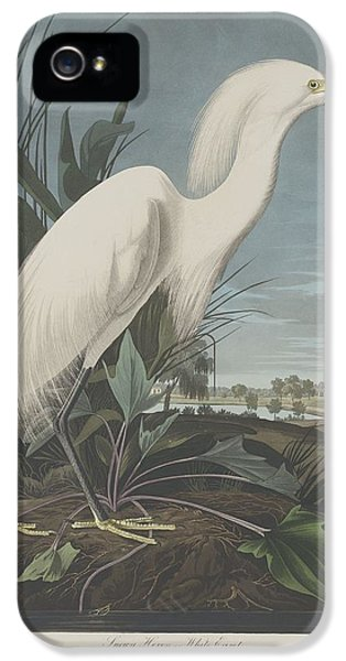 Ibis iPhone 5s Case - Snowy Heron Or White Egret by Dreyer Wildlife Print Collections