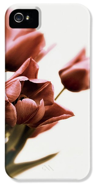 IPhone 5s Case featuring the photograph Still Life Tulips by Jessica Jenney