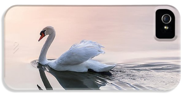 Sunset Swan IPhone 5s Case by Elena Elisseeva