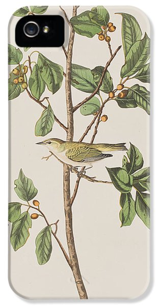 Tennessee Warbler IPhone 5s Case