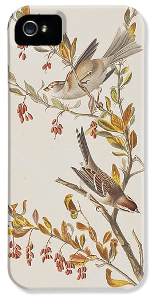 Tree Sparrow IPhone 5s Case by John James Audubon