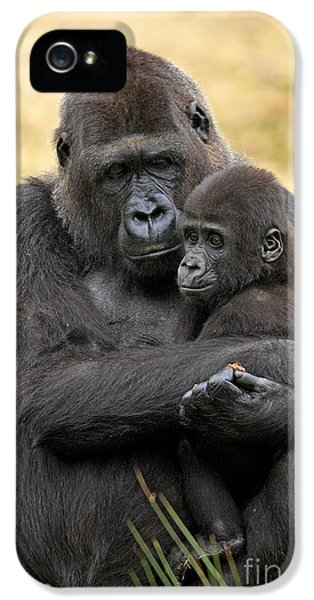 Western Gorilla And Young IPhone 5s Case by Jurgen & Christine Sohns/FLPA