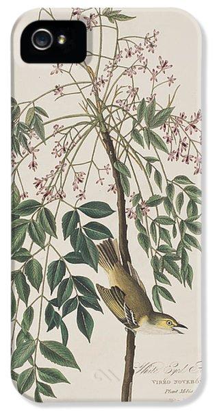 Flycatcher iPhone 5s Case - White-eyed Flycatcher by John James Audubon