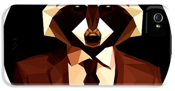 Abstract Geometric Raccoon IPhone 5s Case