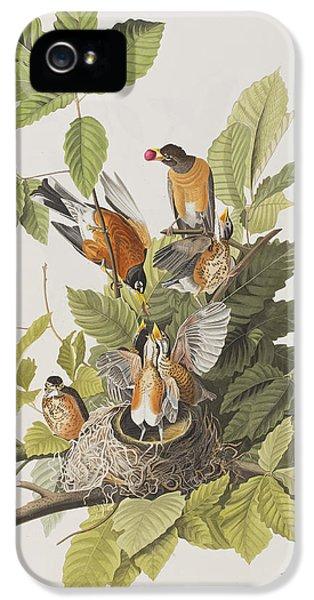 American Robin IPhone 5s Case by John James Audubon