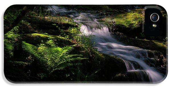 Lynn Mill Waterfalls IPhone 5s Case