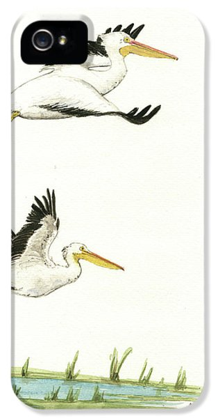 The Fox And The Pelicans IPhone 5s Case by Juan Bosco