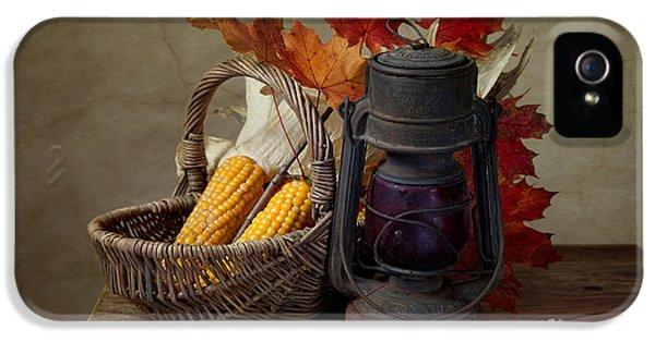 Autumn IPhone 5s Case by Nailia Schwarz