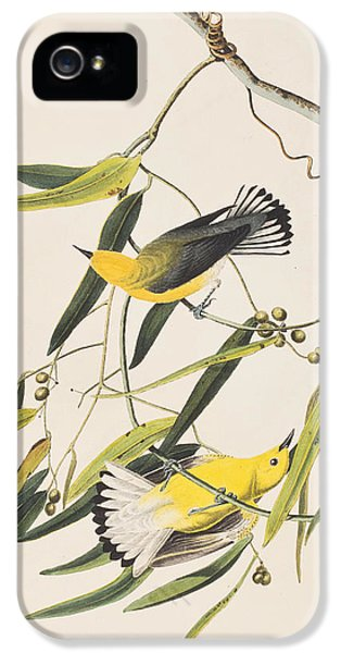 Prothonotary Warbler IPhone 5s Case by John James Audubon