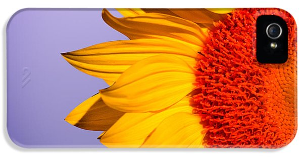 Sunflowers IPhone 5s Case