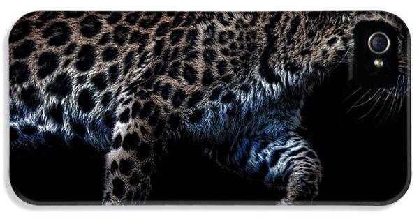 Amur Leopard IPhone 5s Case by Martin Newman