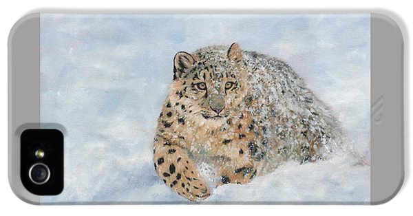 Snow Leopard IPhone 5s Case by David Stribbling