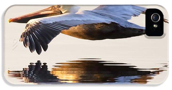 Pelican iPhone 5s Case - A Closer Look by Janet Fikar