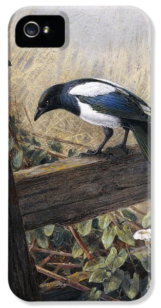 Magpies iPhone 5s Case - A Magpie Observing Field Mice by Johan Gerard Keulemans
