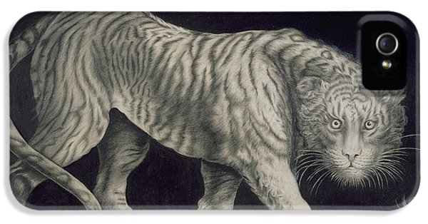 A Prowling Tiger IPhone 5s Case by Elizabeth Pringle
