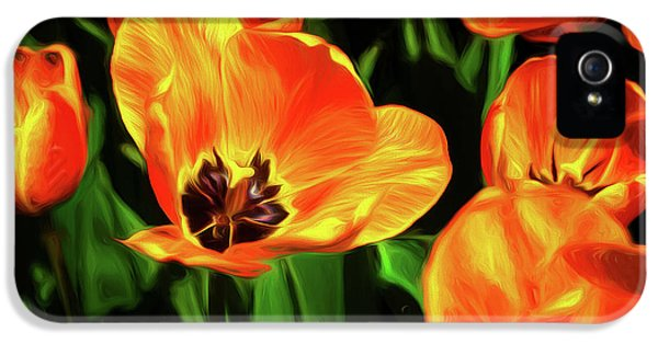Tulip iPhone 5s Case - A Splash Of Color by Tom Mc Nemar