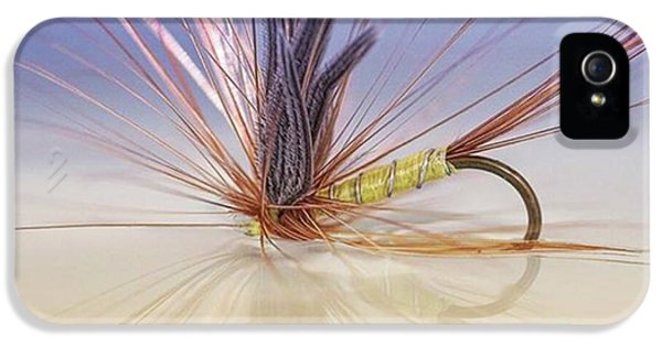 iPhone 5s Case - A Trout Fly (greenwell's Glory) by John Edwards