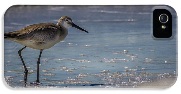 Sandpiper iPhone 5s Case - A Walk On The Beach by Marvin Spates