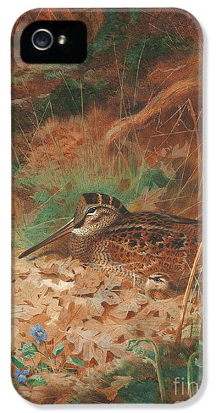 Woodcock iPhone 5s Case - A Woodcock And Chick In Undergrowth by Archibald Thorburn