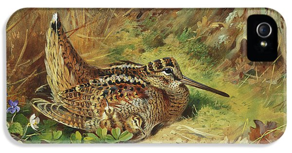 A Woodcock And Chicks IPhone 5s Case by Archibald Thorburn