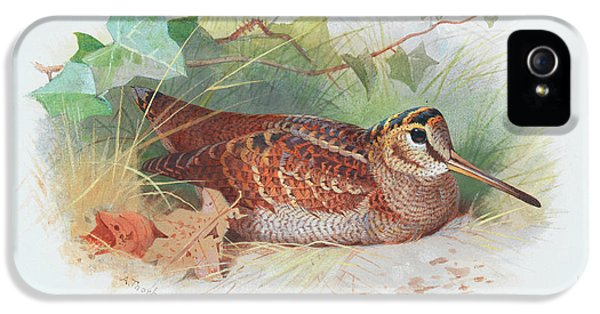 Woodcock iPhone 5s Case - A Woodcock Resting by Archibald Thorburn