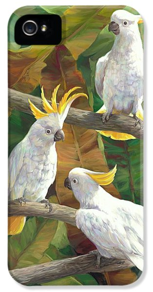 Cockatoo iPhone 5s Case - Above It All by Laurie Hein