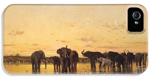 Crane iPhone 5s Case - African Elephants by Charles Emile de Tournemine