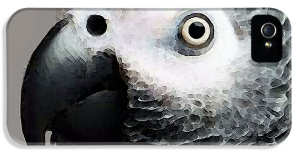 African Gray Parrot Art - Softy IPhone 5s Case by Sharon Cummings