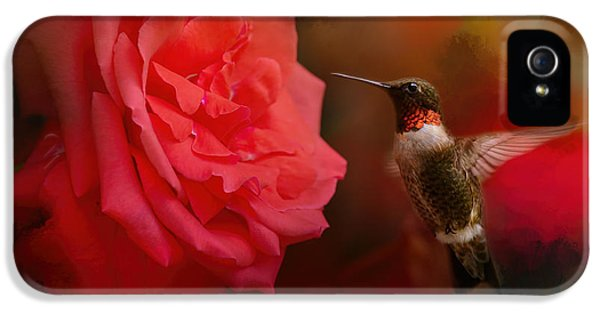 Humming Bird iPhone 5s Case - After The Big Rose by Jai Johnson
