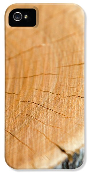 Against The Grain IPhone 5s Case by Christina Rollo
