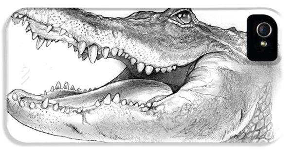 American Alligator IPhone 5s Case