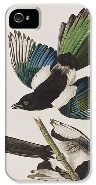 American Magpie IPhone 5s Case by John James Audubon