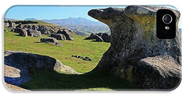 Anvil Rock IPhone 5s Case by Nareeta Martin