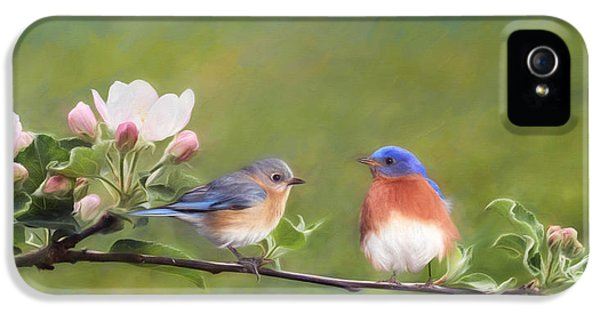 Apple Blossoms And Bluebirds IPhone 5s Case