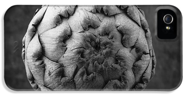 Artichoke Black And White Still Life Two IPhone 5s Case by Edward Fielding