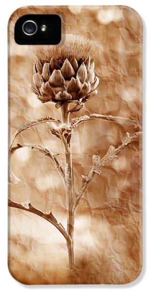 Artichoke Bloom IPhone 5s Case by La Rae  Roberts