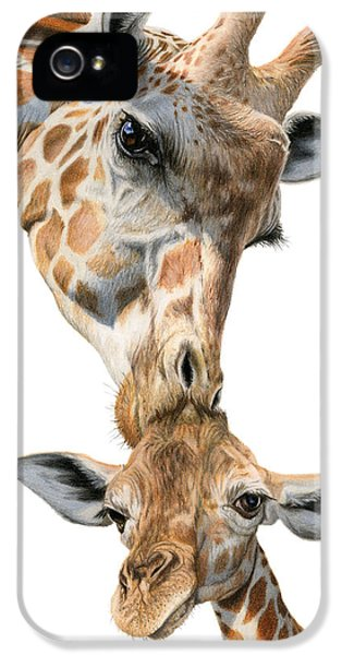 Mother And Baby Giraffe IPhone 5s Case by Sarah Batalka