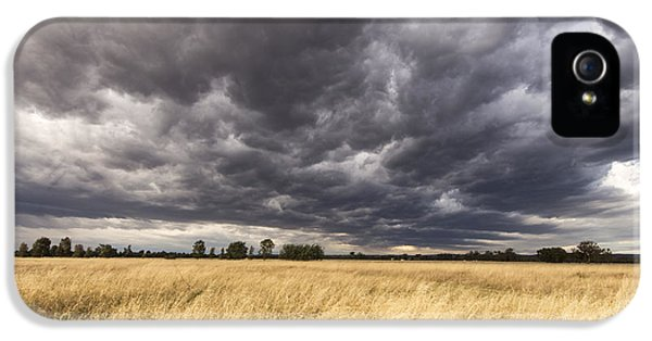 The Calm Before The Storm IPhone 5s Case by Linda Lees